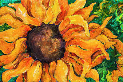 Painting - Sunflower #5 by Sally Quillin