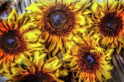 Sunflower Abstract Art Print