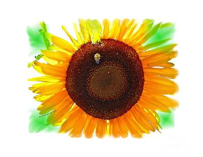 Sunflower And Bumble Bee Transparent Photo-painting Art Print by Shelly Weingart
