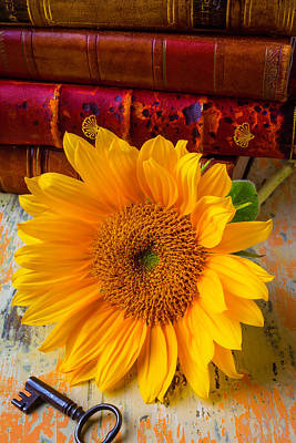 Sunflower And Leather Books Art Print
