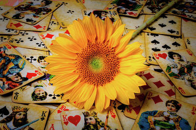 Photograph - Sunflower And Old Playing Cards by Garry Gay