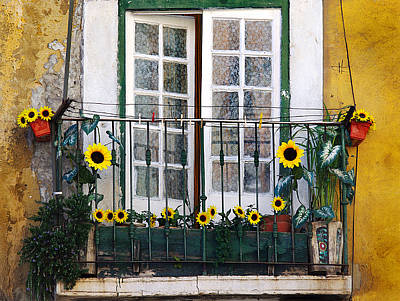 Antique Flowers Vase Wall Art - Photograph - Sunflower Balcony by Carlos Caetano