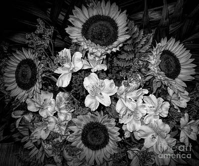Photograph - Sunflower Bouquet Dramatic Black And White by Rose Santuci-Sofranko