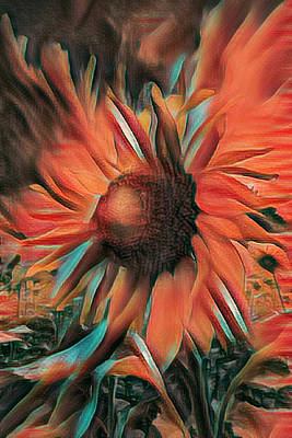 Photograph - Sunflower Bright And Bold by Debra and Dave Vanderlaan