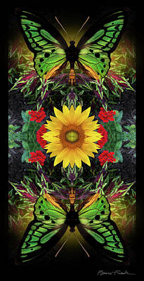 Photograph - Sunflower by Bruce Frank