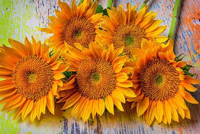 Flower Photograph - Sunflower Bunch by Garry Gay