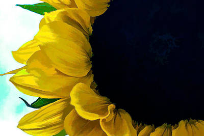 Digital Art - Sunflower by Charles Muhle