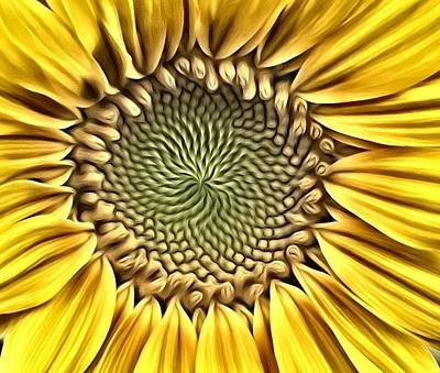 Photograph - Sunflower Charm  by Kimberly Woyak