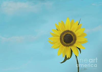 Painting - Sunflower by Chitra Helkar