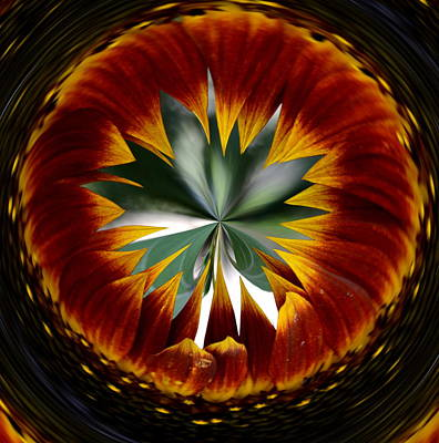 Digital Art - Sunflower Circle by Cheryl Charette