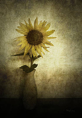 Photograph - Sunflower by Cynthia Lassiter