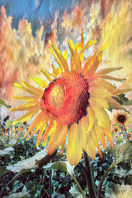 Photograph - Sunflower Dawn In Watercolors by Debra and Dave Vanderlaan
