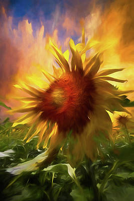 Photograph - Sunflower Dawn Watercolor Painting by Debra and Dave Vanderlaan