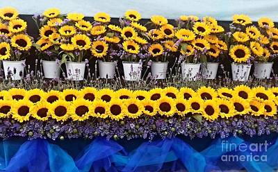 Photograph - Sunflower Display by Joan-Violet Stretch