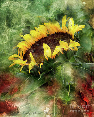 Digital Art - Sunflower Dreams by Kathy Russell