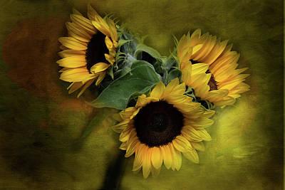 Sunflower Family Art Print