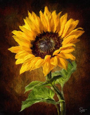 Photograph - Sunflower Faux Oil Painting by Endre Balogh