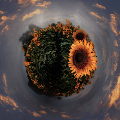 Photograph - Sunflower Field Little Planet  by Emmanuel Panagiotakis