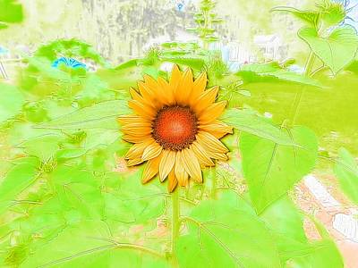 Photograph - Sunflower Field Of Beauty by Belinda Lee