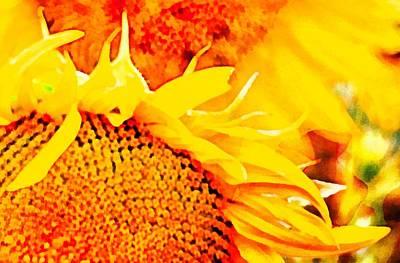 Digital Art - Sunflower Fire Abstract by Dorothy Berry-Lound
