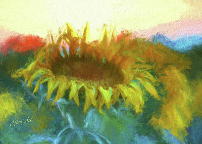 Photograph - Sunflower Glow by OLena Art Brand