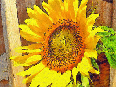 Digital Art - Sunflower Growing Along A Fence by Digital Photographic Arts