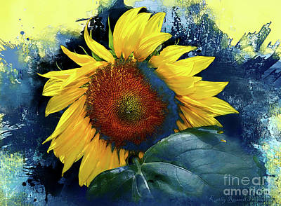 Digital Art - Sunflower In Blue by Kathy Russell