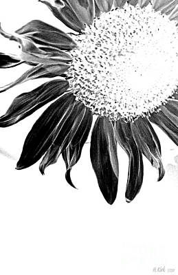 Photograph - Sunflower In Corner Bw Threshold by Heather Kirk