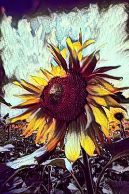 Photograph - Sunflower In Deep Tones by Debra and Dave Vanderlaan