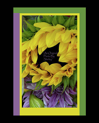 Pasta Al Dente - Sunflower In Green And Purple by Shirley Anderson