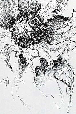 Sunflower In Pen And Ink Art Print by Amy Williams