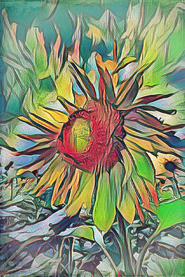 Photograph - Sunflower In Rainbow Colors by Debra and Dave Vanderlaan