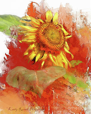 Digital Art - Sunflower In Red by Kathy Russell