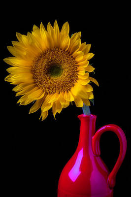 Flower Photograph - Sunflower In Red Pitcher by Garry Gay