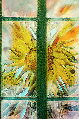 Photograph - Sunflower In The Garden Window  by Debra and Dave Vanderlaan