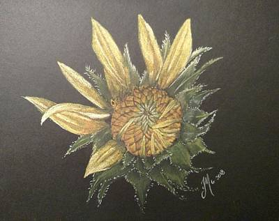 Pastel - Sunflower by Joan Mansson
