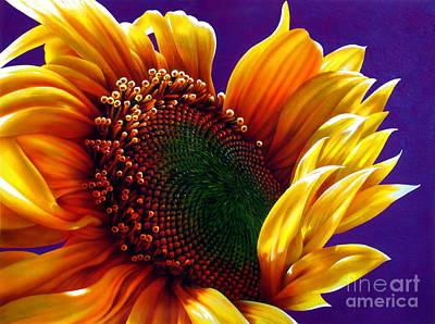 Sunflower Art Print by Jurek Zamoyski