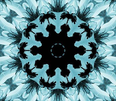 Digital Art - Sunflower Kaleidoscope In Blue by Aimee L Maher ALM GALLERY