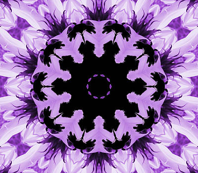 Digital Art - Sunflower Kaleidoscope In Purple by Aimee L Maher Photography and Art Visit ALMGallerydotcom