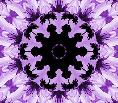 Digital Art - Sunflower Kaleidoscope In Purple by Aimee L Maher ALM GALLERY