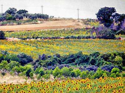 Photograph - Sunflower Landscape by Dorothy Berry-Lound
