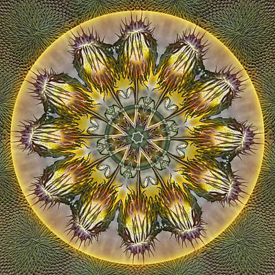Digital Art - Sunflower Lollipops by Becky Titus