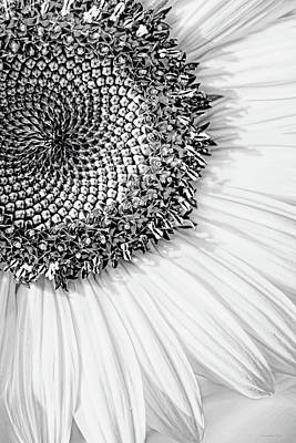 Photograph - Sunflower Macro Black And White by Jennie Marie Schell