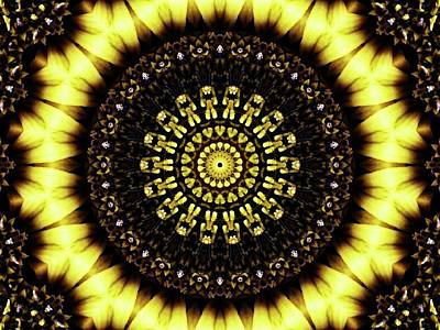 Photograph - Sunflower Manipulation 2 by Karen Stahlros