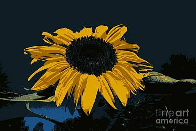 Photograph - Sunflower Manipulation  by Eunice Miller