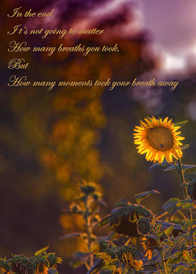 Inspirational Saying Photograph - Sunflower Moments by Bill Tiepelman