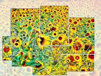 Digital Art - Sunflower Montage by Dorothy Berry-Lound