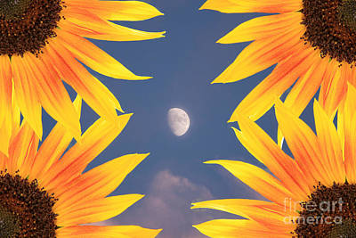 Sunflower Moon Art Print