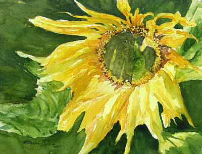 Painting - Sunflower Morning by Sherri Bails
