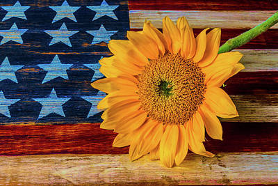 Photograph - Sunflower On American Flag by Garry Gay